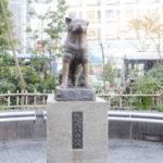 渋谷駅でおすすめのホワイトニング14選!徒歩5分以内で駅近